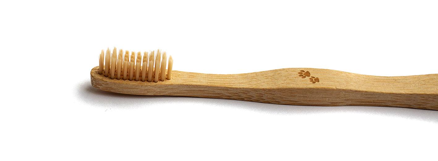 Bambus vs. Holz
